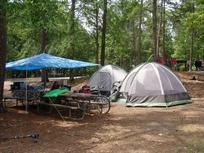 Camping at Alabama State Parks