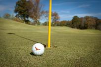 Alabama State Parks Golf