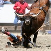 Livermore Rodeo