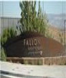 Fallon Sports