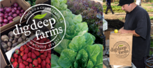 Dig Deep Farms