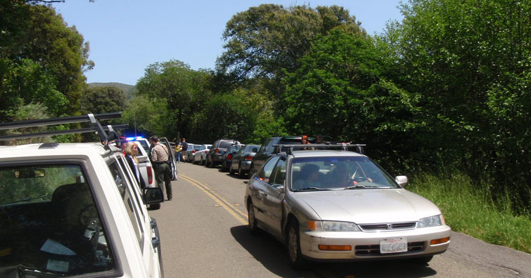 Vehicle congestion on Muir Woods Road