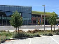 Palo Alto Deep Root