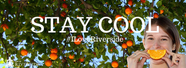 Stay Cool Orange