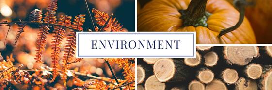 Fall environment header
