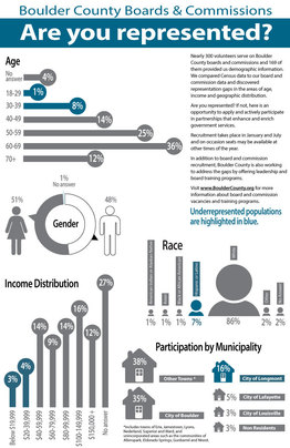 Infographic explaining the demographics of Boards & Commissions
