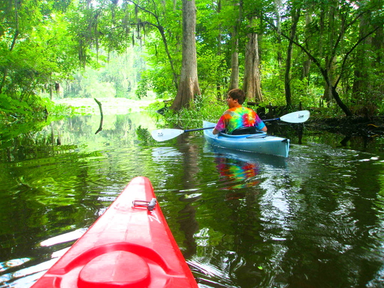 Kayaking at Hillsborough River State Park