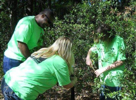 Able Trust participants work on a project at O'Leno State Park.