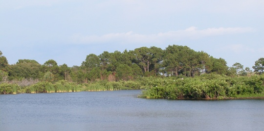 St. Andrews State Park in Panama City