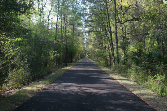 St. Marks Trail