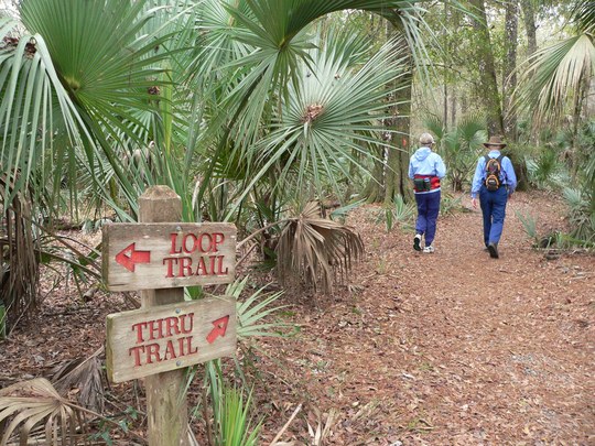 Hikers on the Marjorie Harris Carr Cross Florida Greenway