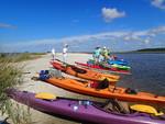 Hidden Coast Paddling Tour - Hog Island