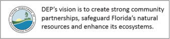 DEP vision statement