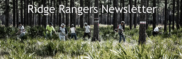 Ridge Rangers at work