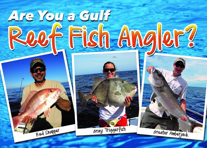 Are you a gulf reef fish angler for Myfwc fishing license