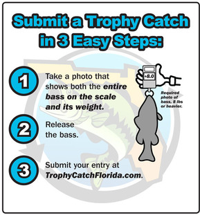 TrophyCatch 1-2-3