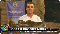 Joseph Brooks Morrell