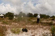 Time Lapse of Ridge Rangers Planting