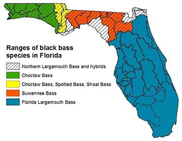 Black bass range map