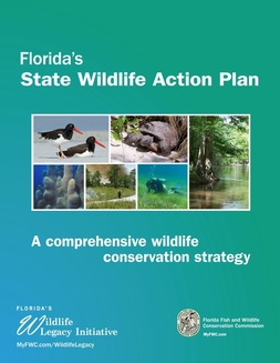 Cover of the 2012 State Wildlife Action Plan, FWC