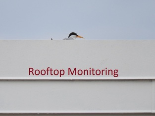 Rooftop Monitoring