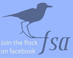 Florida Shorebird Alliance Facebook Group
