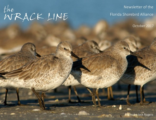 October Wrack Line Cover Photo