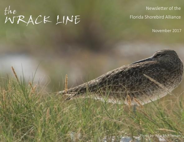 November Wrack Line Cover