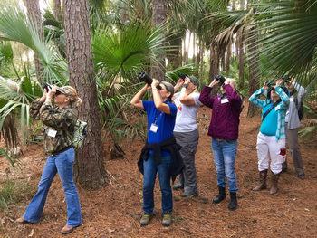 Group Birding