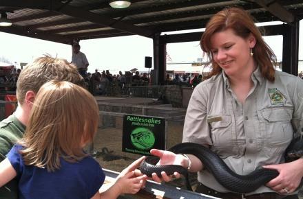 Image: Claxton Rattlesnake & Wildlife Fest