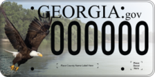 Eagle over lake plate