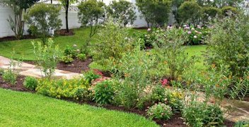 Radium Springs pollinator garden