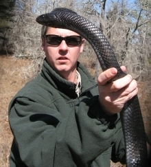 Biologist with eastern indigo snake.