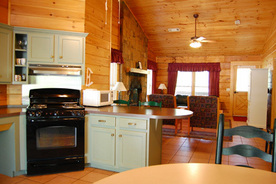 Georgia State Park Cabin