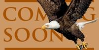 Eagle license plate promo