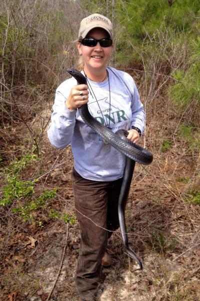 Biologist with indigo snake