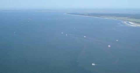 Shrimp trawling off Sapelo