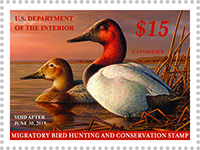 2014-15 federal duck stamp