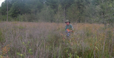 Botanist Tom Patrick at Sumter Co. site. Bill McAvoy