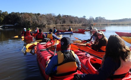 Weekend for Wildlife Altamaha trip