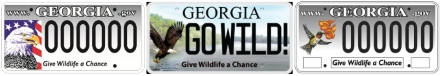 DNR nongame wildlife license plates