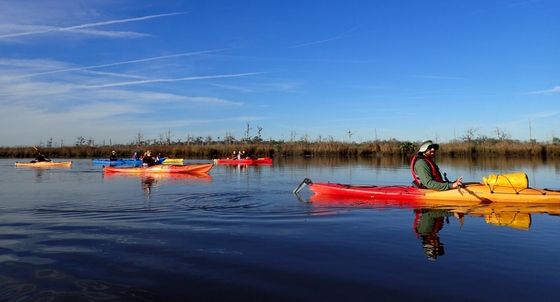 Weekend for Wildlife kayaking trip on the Altamaha (SouthEast Adventures)