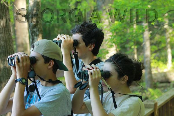 Georgia Wild masthead: YBC participants