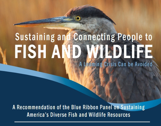 Sustaining America's Wildlife report