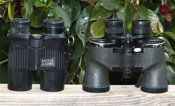 Binoculars (Terry W. Johnson)