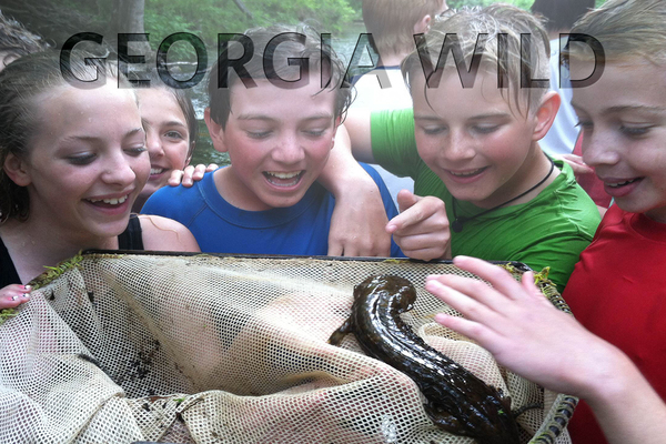 Georgia Wild masthead: Kids and hellbender