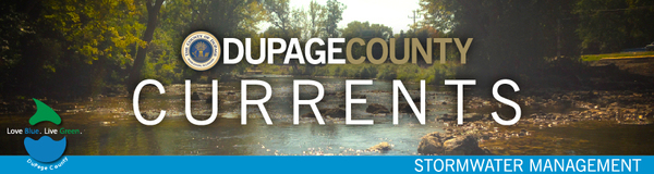 DuPage County Currents