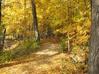 Hike Lake County