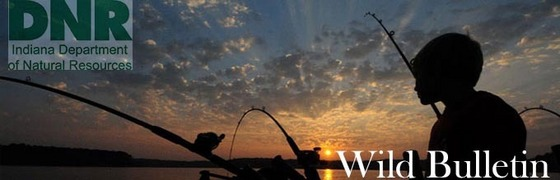 Your guide to fishing in indiana for Indiana fishing regulations
