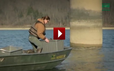 New indiana fishing guide turkey hunts and what s biting for Brookville lake fishing report